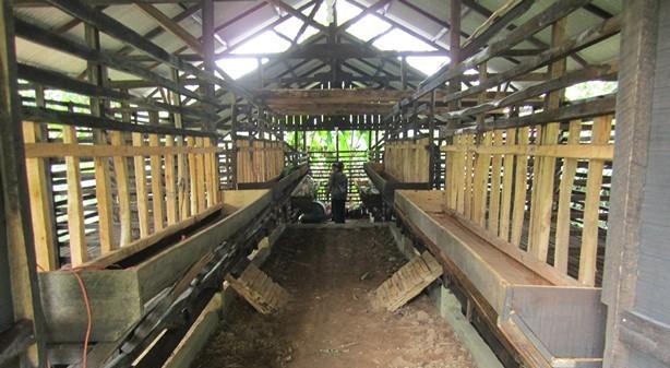 gambar kandang ternak kambing
