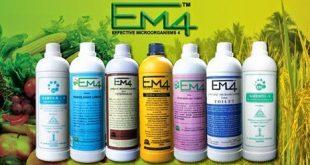 Cara Pembuatan Pupuk Kandang Dengan Aktivator EM-4