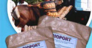 Pakan Transportasi Untuk Ternak Ruminansia