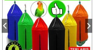 Jual Kerodong Sangkar Burung Lovebird