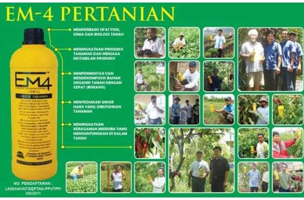 jual em4 pertanian