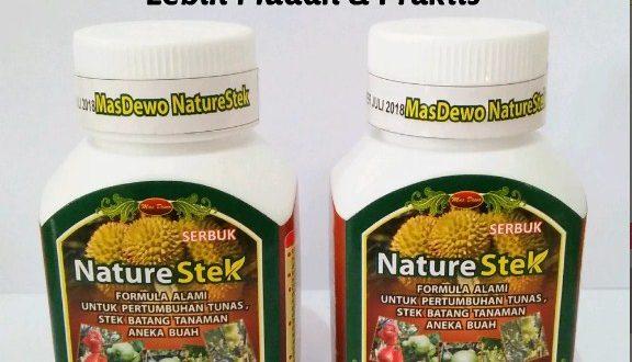 Jual Nature Stek Akar Batang